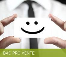 BAC PRO VENTE : prospection, négociation, suivi clientèle (Apprentissage possible en terminale)