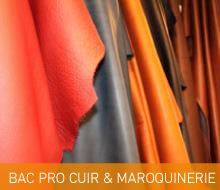 BAC PROFESSIONNEL MÉTIERS DU CUIR (Option Maroquinerie) (APPRENTISSAGE POSSIBLE EN TERMINALE)